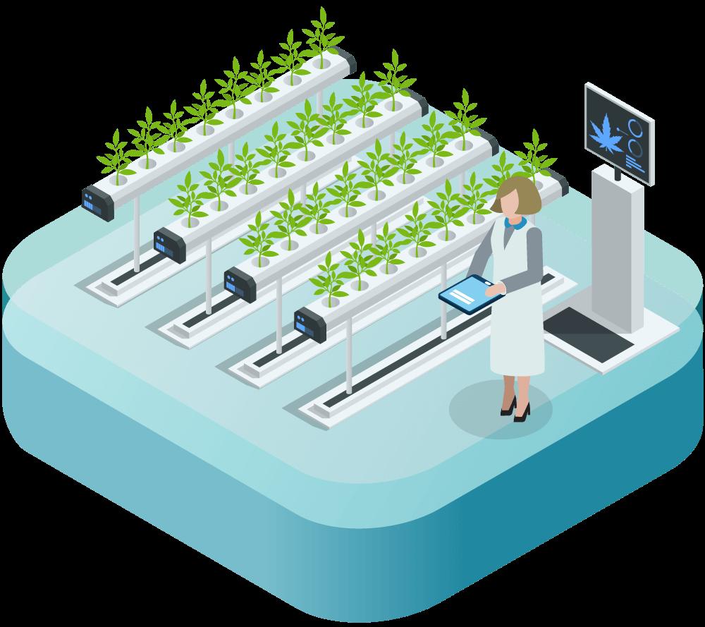 An animation of a cannabis cultivation facility.