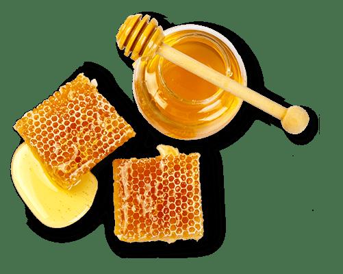 Honeycomb and honey jar