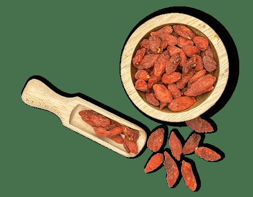 Goji berries bowl with scoop