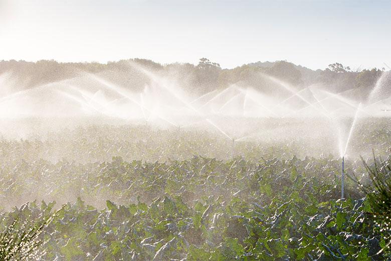 Crop sprayers in Victoria, Australia