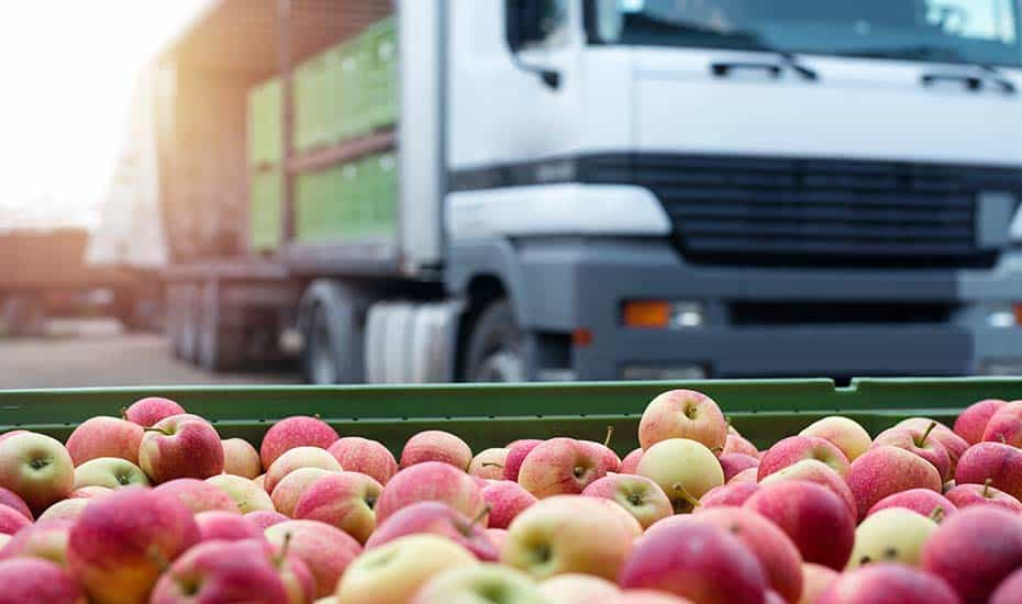 Finding the best wholesale food supplier