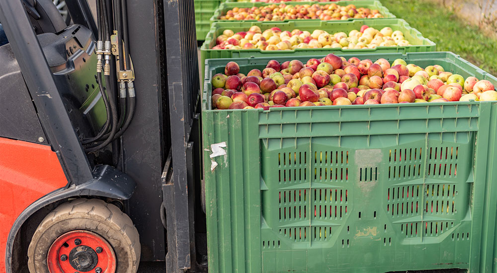 Organic wholesale
