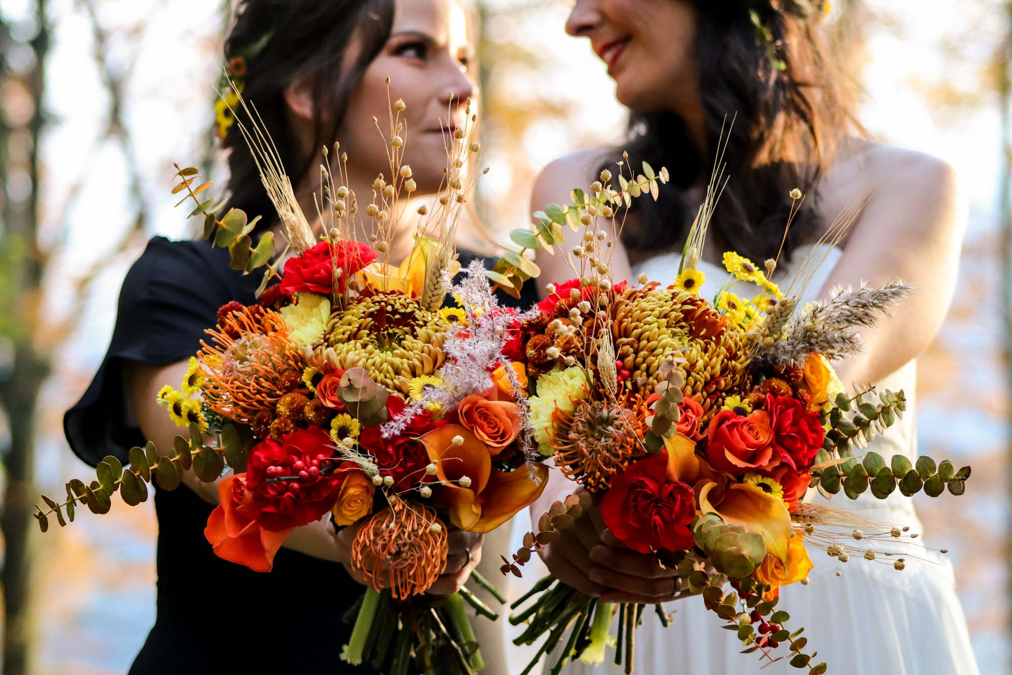 Lieblingsfarbe: Herbst – Ein Versprechen im Wald