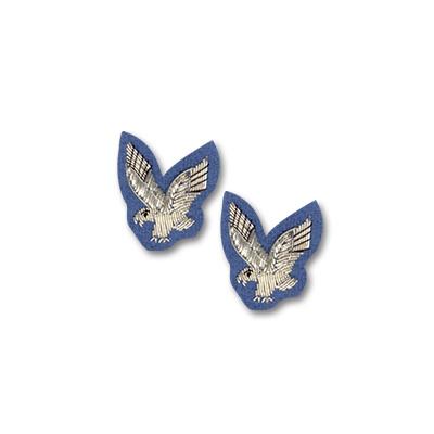 AAC Collar Badges