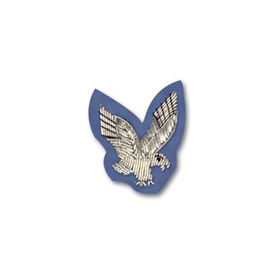 AAC Sleeve Badge