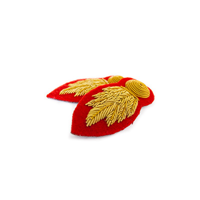 RE Sleeve Badge