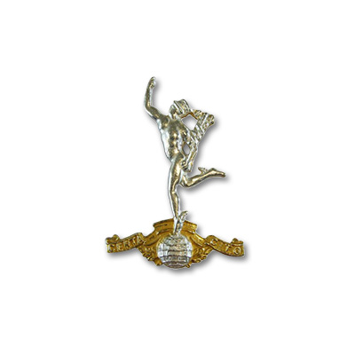 RS NCO Collar Badges