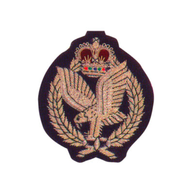 AAC Blazer Badge