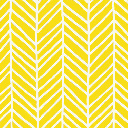 Yellow falcon