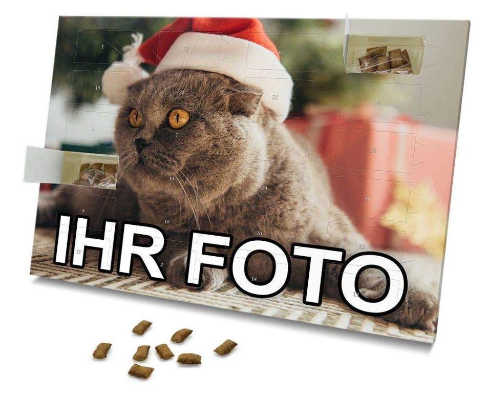 Personalisierter Weihnachtskalender für Katzen