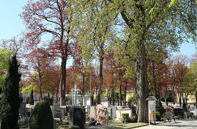 Alter-Friedhof-Kaufbeuren-Grabstein-Gedenkstätte