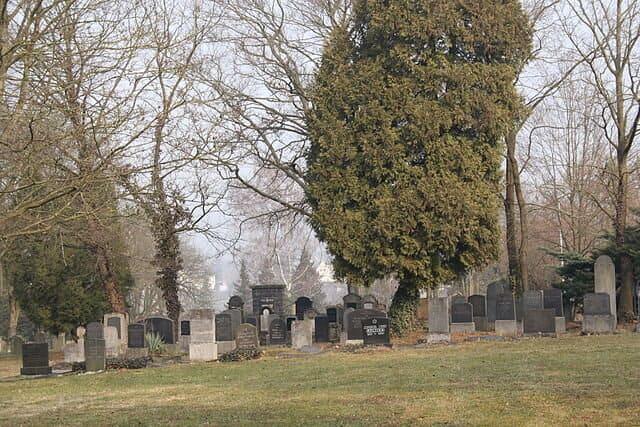 Neuwied-Friedhof-Grabsteine