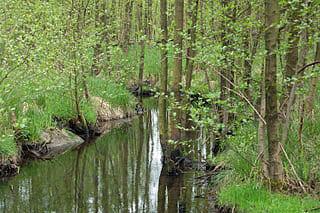 Henstedt-ulzburg-Quelle