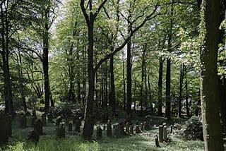 schöne Grabsteine Gütersloh Steinmetz Urnengrab Einzelgrab Doppelgrabstein schöne Grabmäler