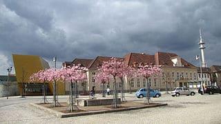 Luckenwalde-Steinmetz-Grabstein-Friedhof-Grab