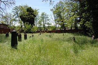 schöne günstige Grabsteine in Haldensleben Steinmetz Urnengrab Einzelgrab Doppelgrabstein schöne Grabmäler