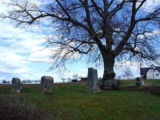 schöne günstige Grabsteine in Weil im Schönbuch Steinmetz Urnengrab Einzelgrab Doppelgrabstein schöne Grabmäler