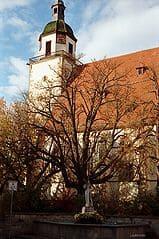 schöne günstige Grabsteine in Weilheim an der Teck Steinmetz Urnengrab Einzelgrab Doppelgrabstein schöne Grabmäler