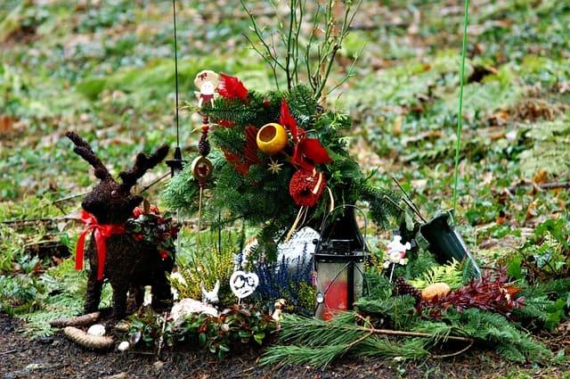 anonyme Bestattungen im Friedwald mit Grabstein