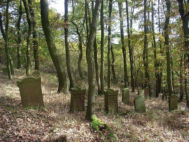 schöne günstige Grabsteine in Sontra Steinmetz Urnengrab Einzelgrab Doppelgrabstein schöne Grabmäler