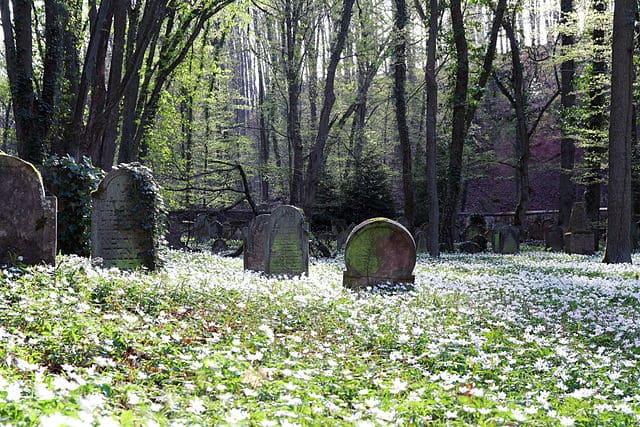 schöne günstige Grabsteine in Kirchheimbolanden Steinmetz Urnengrab Einzelgrab Doppelgrabstein schöne Grabmäler