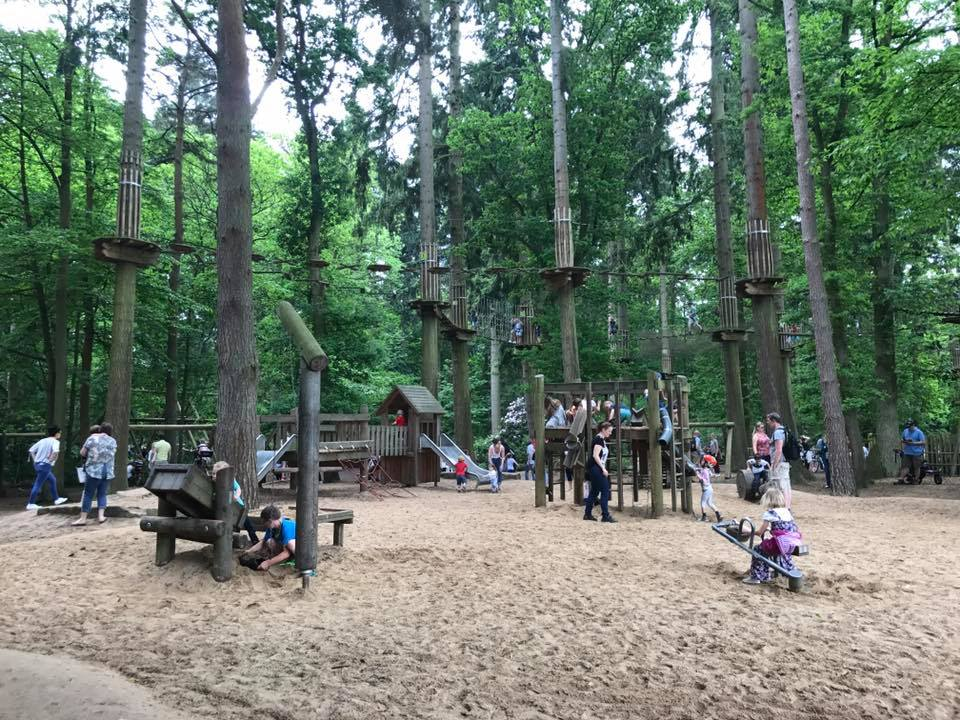 the best treetop adventure course in the woods in Norfolk