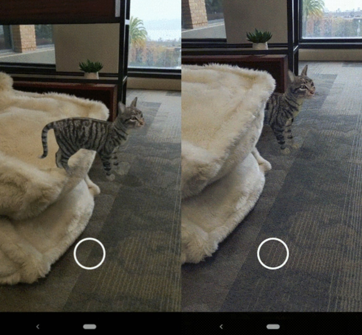 A virtual cat with occlusion turned off and occlusion turned on with Google's ARCore Depth API
