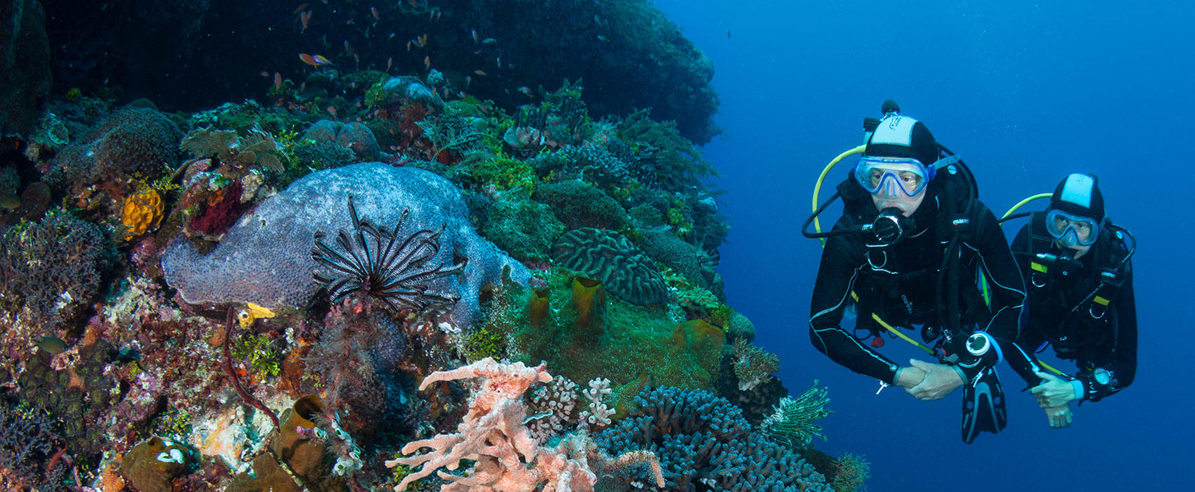 From Snorkelling to Scuba Diving