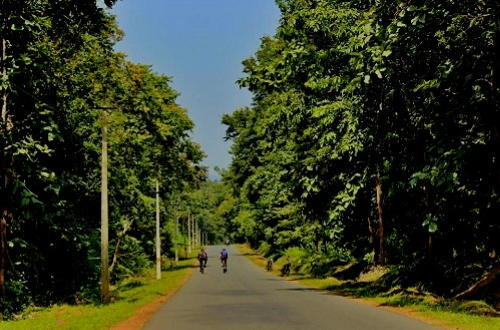 3 Cyclists Through A Tiger Reserve- A Photo Blog