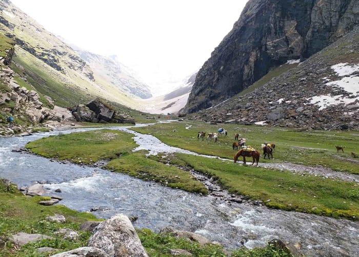 trek in himalayas, Hampta pass