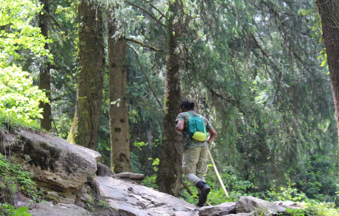 Man trekking in forest