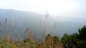 shillong trails