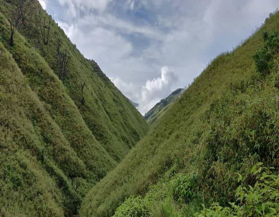 Monsoon Hikes East - Zdukou Valley Nagaland