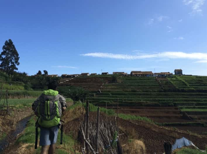 Agriculture on hills