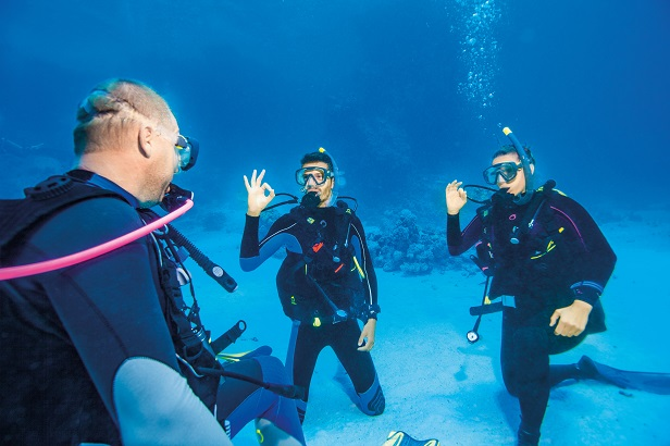 What Happens on your First Dive