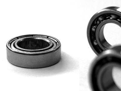 Fishing reel bearings