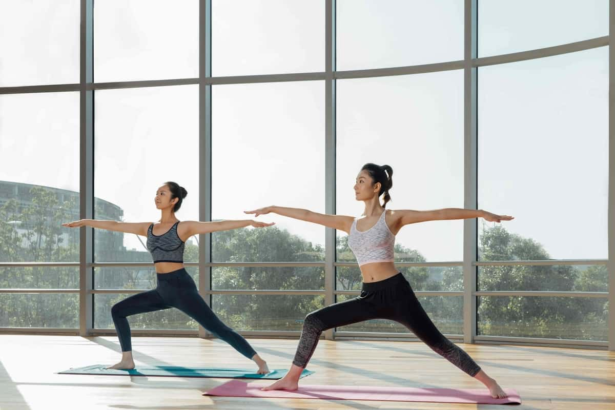 Learn The Art of Hatha Yoga And Its Benefits