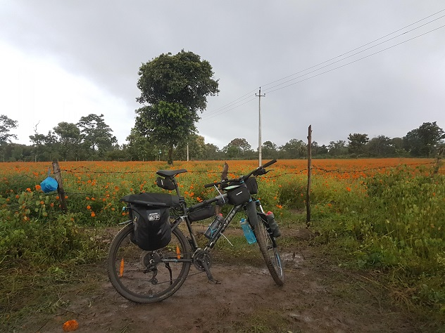 Bicycle Diaries - Calicut To Bangalore