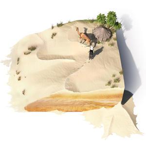 trekking in desert