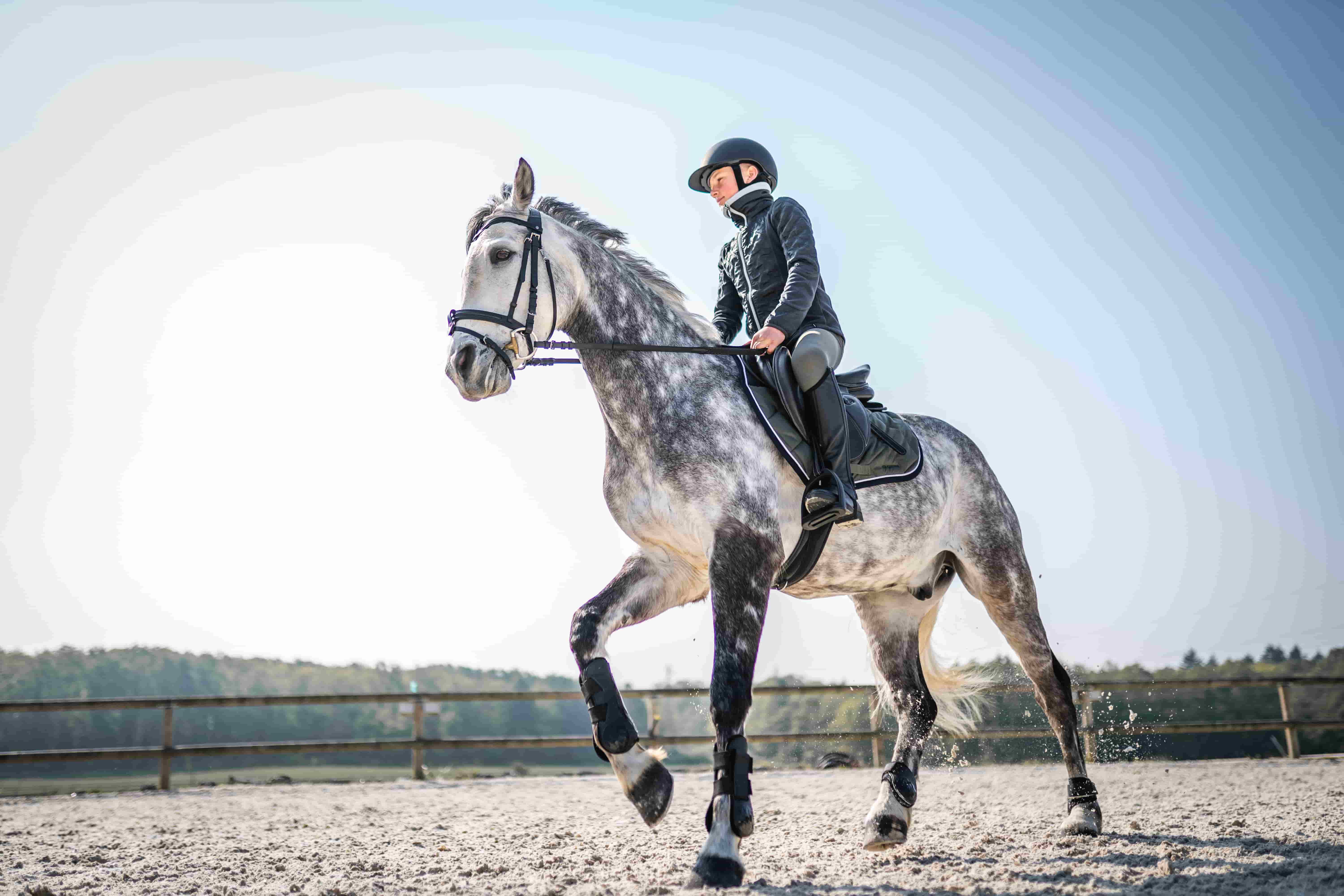 5 Reasons Why Horse Riding is Good for Your Health