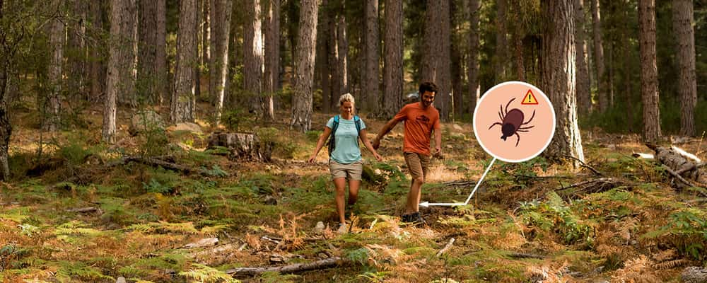 How to Protect Yourself from Ticks When Out Hiking