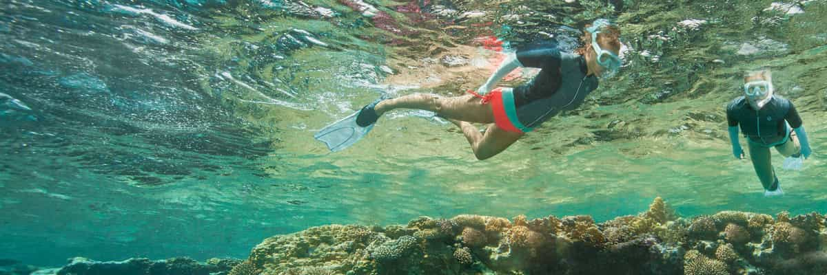 How Should You Choose Where to Snorkel?
