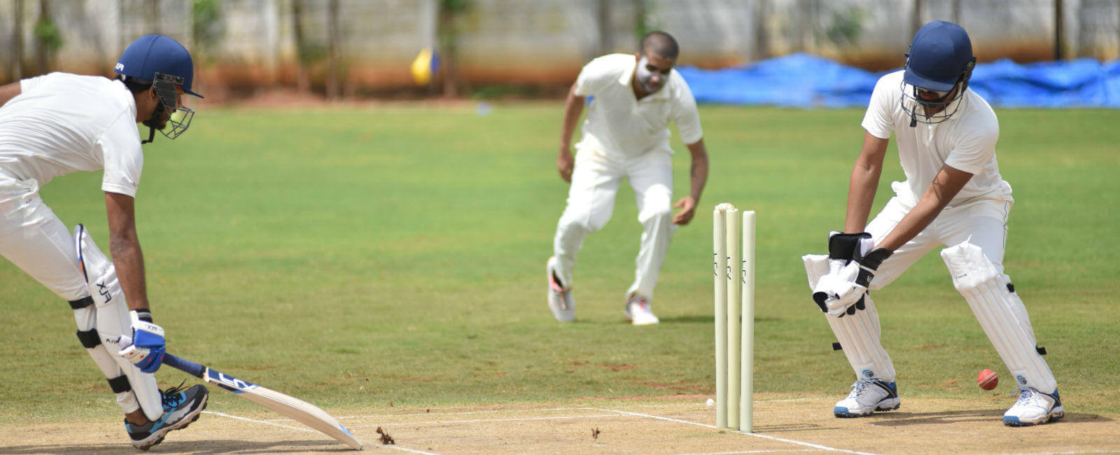 Cricket- Everything You Need to Know About This Sport