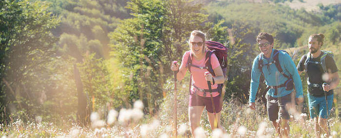 Discover Hiking