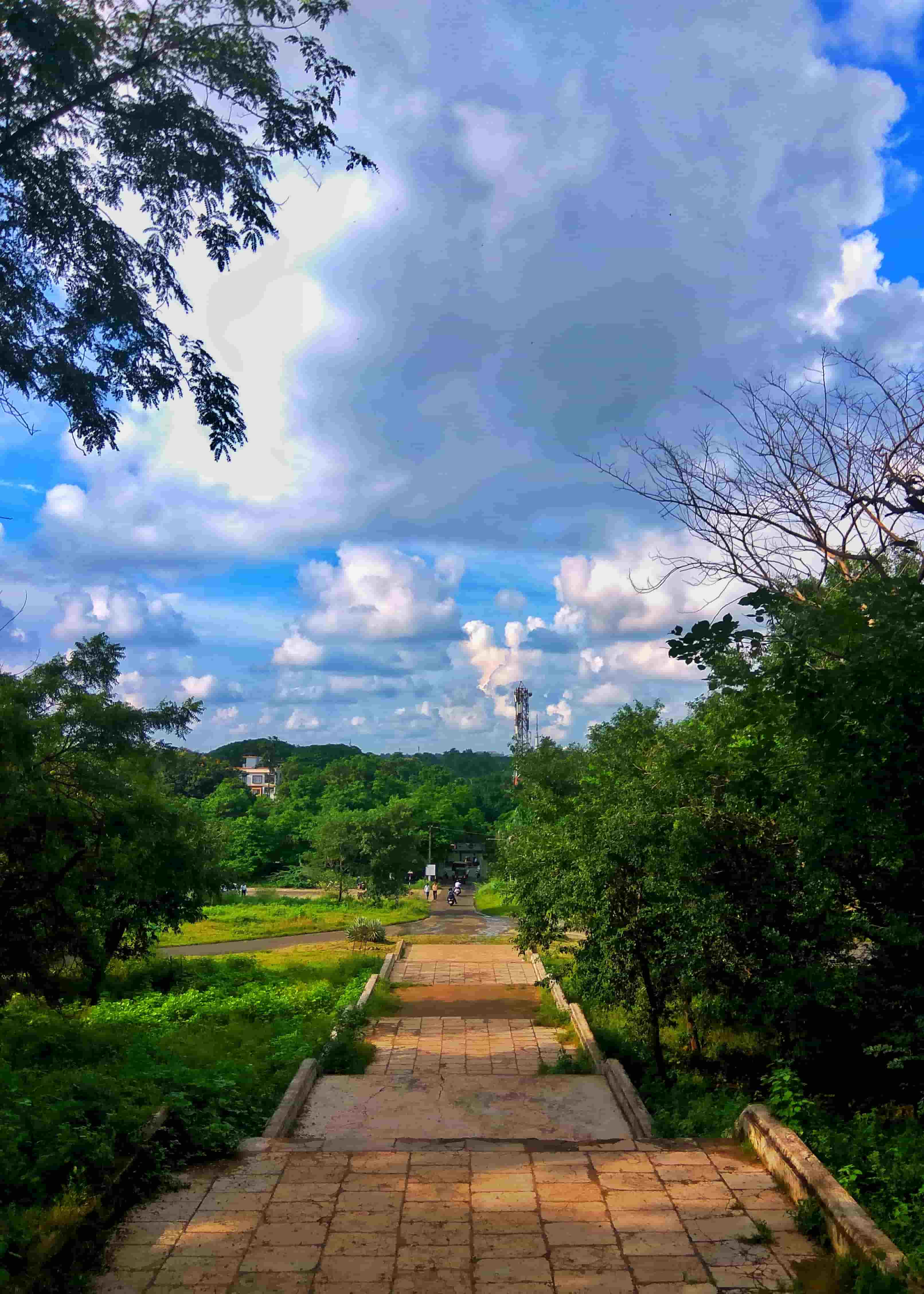 9 Best Picnic Spots Near Nagpur For Day Hikes