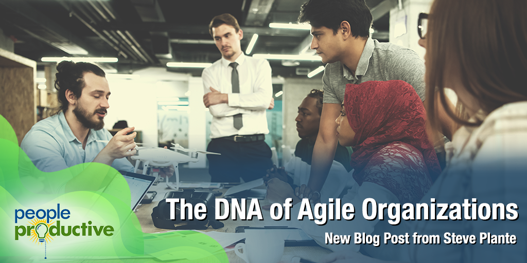 The DNA of Agile Organizations