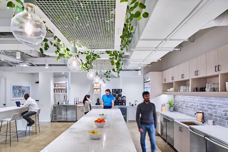 clean and organized office kitchen with fruit bowls on the counter and plants hanging from ceiling