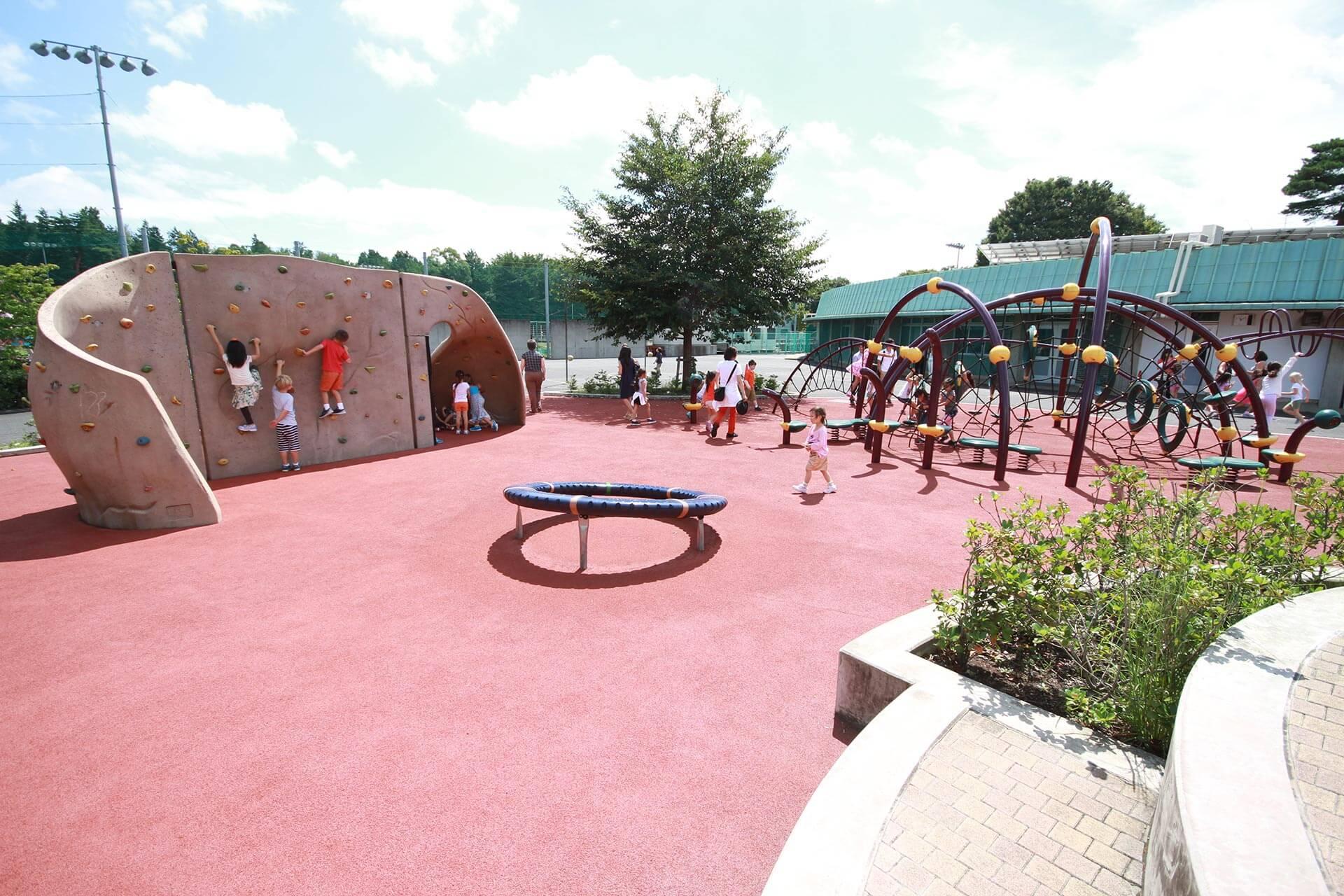 The Elementary School Playground
