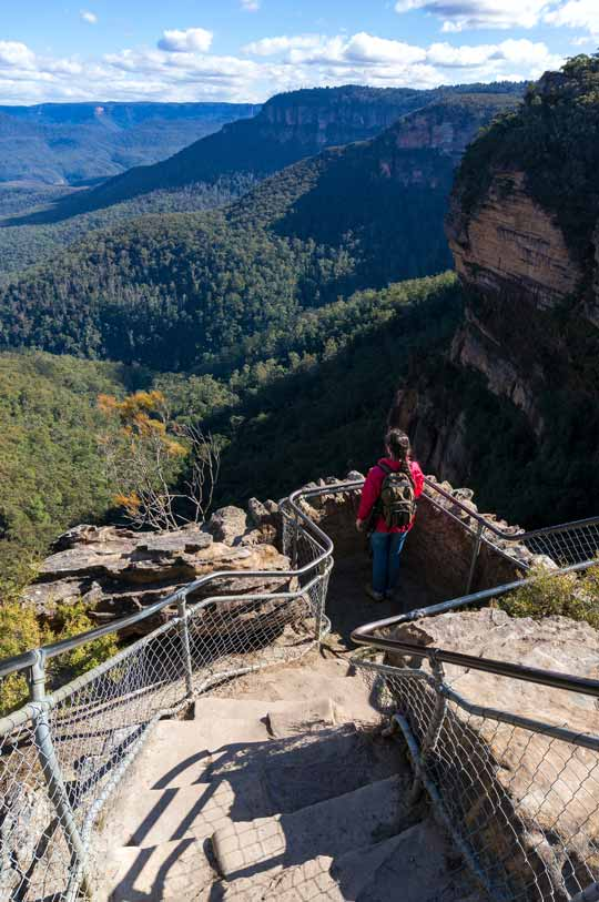 Bushwalking In Blue Mountains NSW