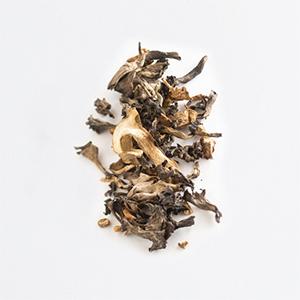 Mélange champignons sauvages